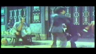 ジャッキーチェン 木人拳 23