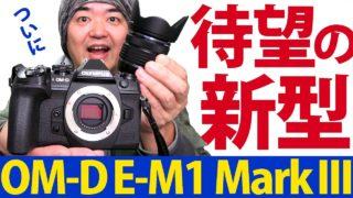 撮って出し! オリンパス OM-D E-M1 Mark III と標準ズームレンズ M.ZUIKO DIGITAL ED 12-45mm F4.0 PRO で京都の裏路地探索ラフモノクローム撮影